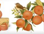 linea cosmetica accordo arancio l'erbolario