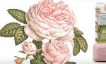 linea cosmetica rosa l'erbolario