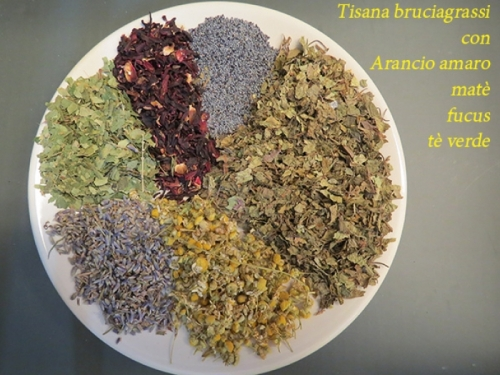 Tisana bruciagrassi